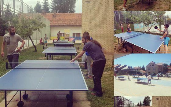 Škola stonog tenisa